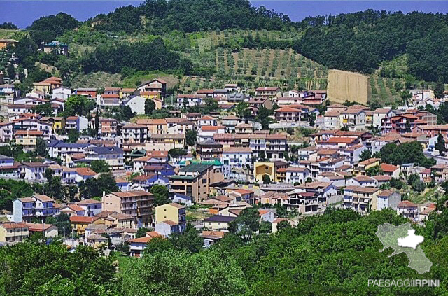 Vallesaccarda